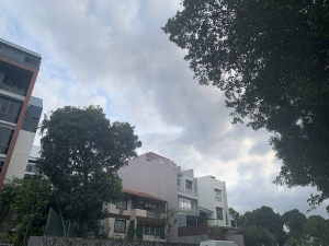 Forett At Bukit Timah Showflat Location and Open Hours